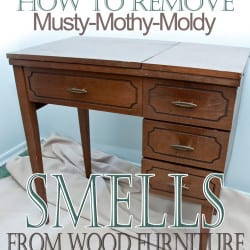 remove-musty-smells-from-furniture