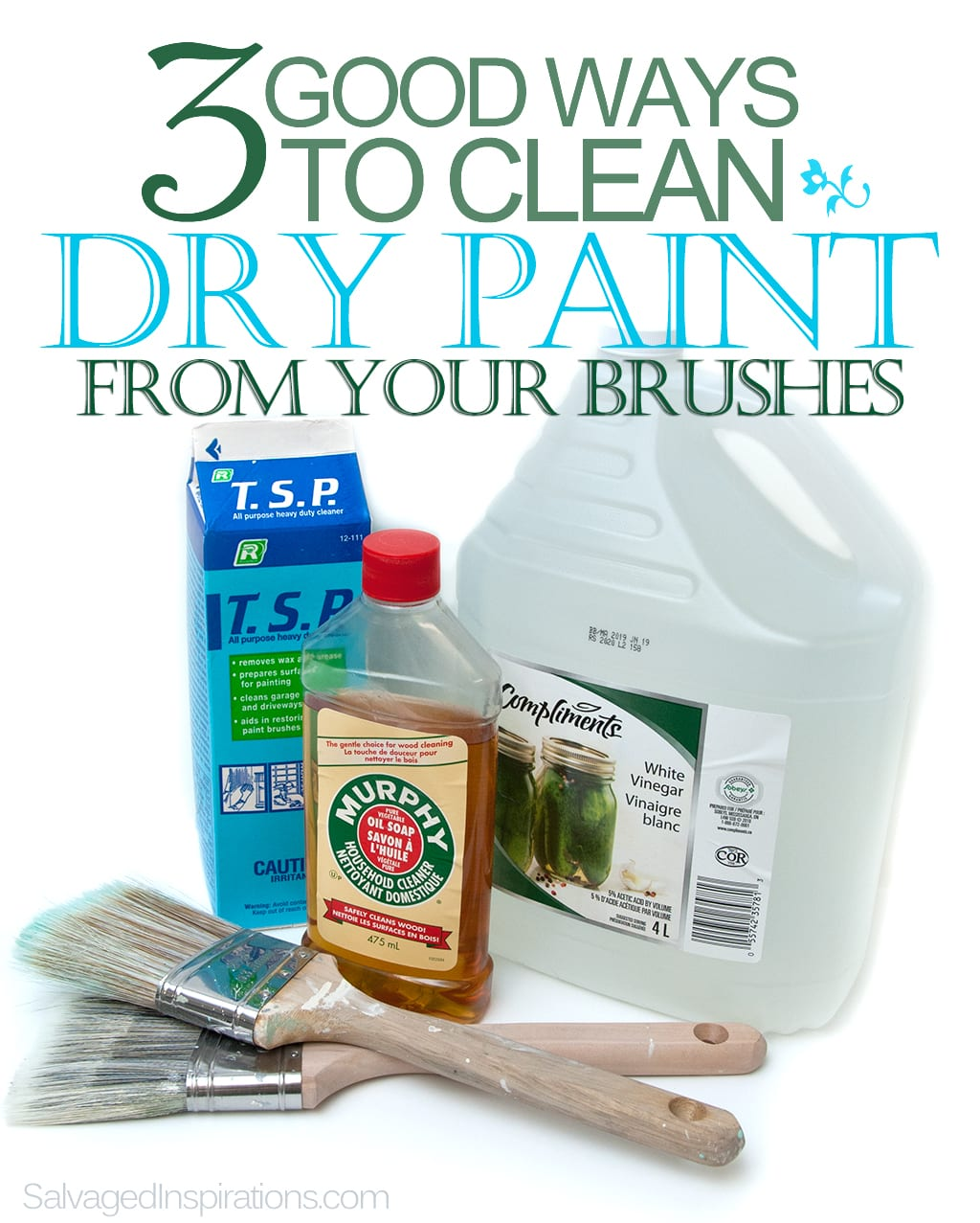 How to clean paintbrushes - How To Clean Dried Paint Off Brush