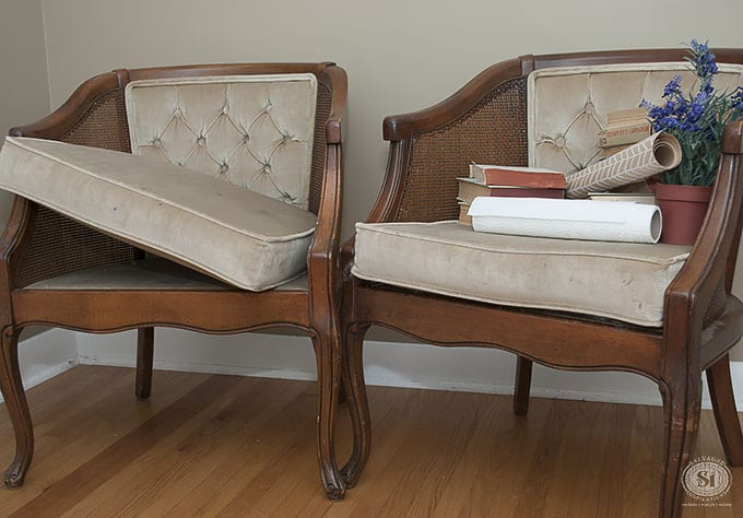 two-velvet-chair-cushions-before