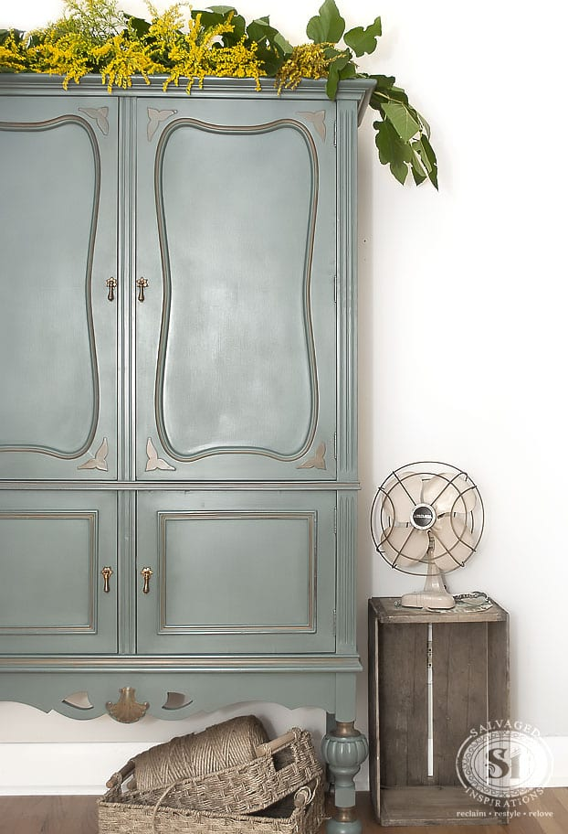 Vintage Cabinet & BS Barn Door