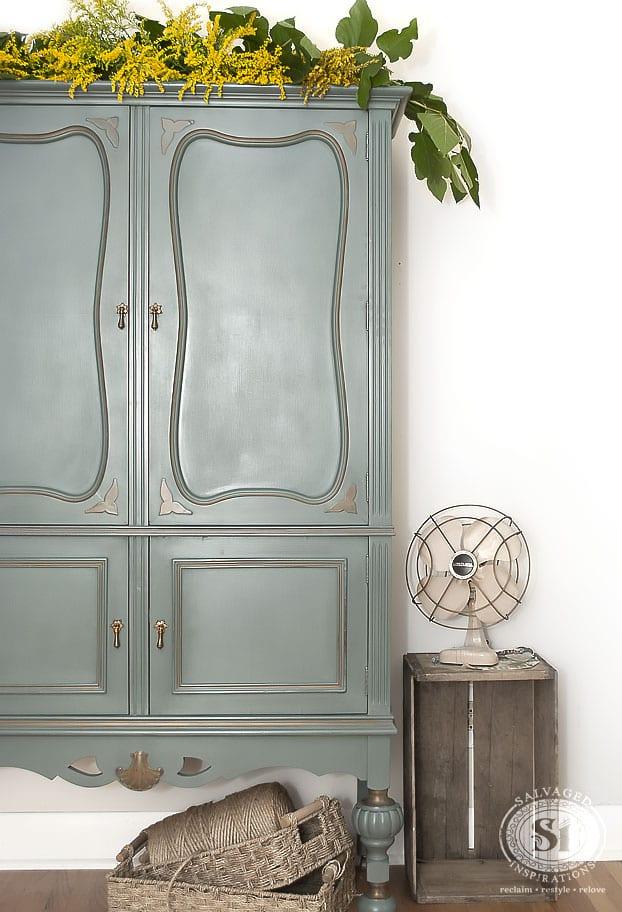 Vintage Cabinet & BS Barn Door