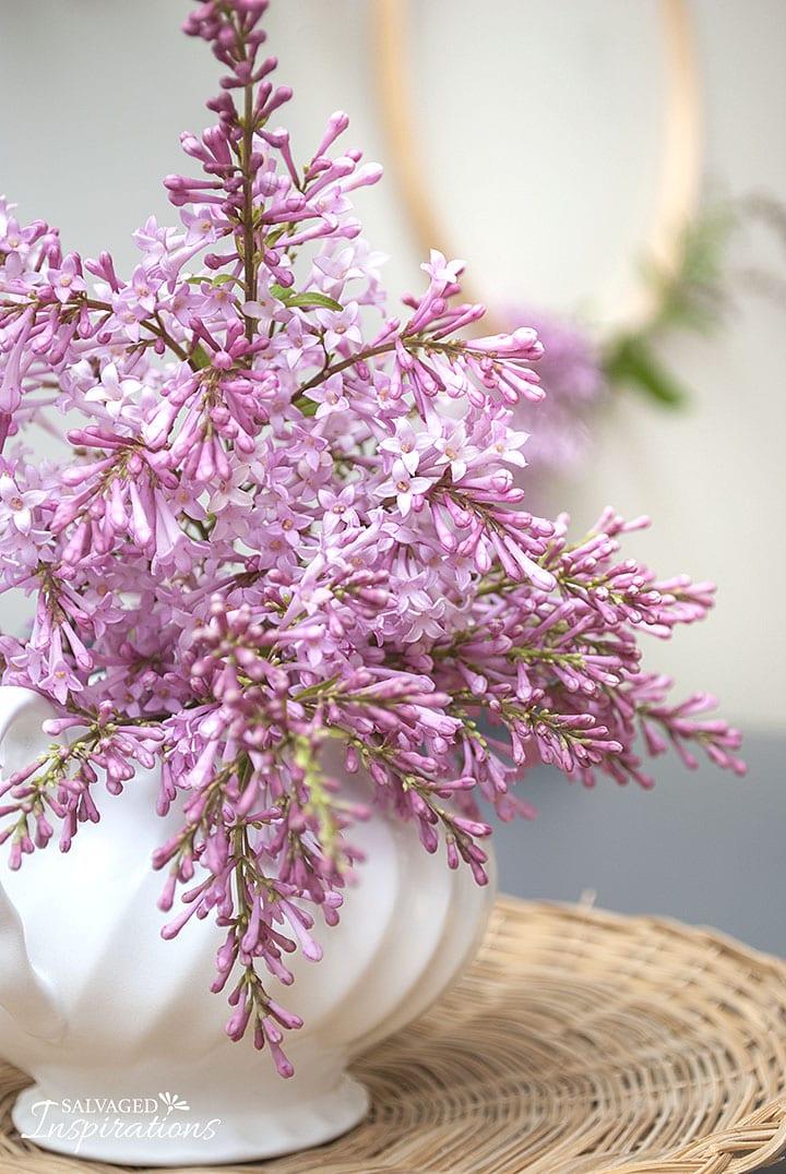Garden Lilacs on Painted Dresser