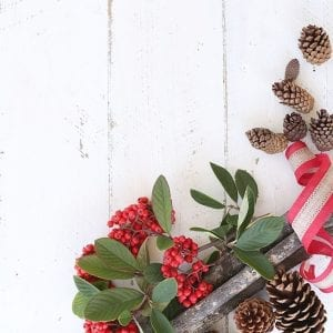 Christmas Berries & Pinecones SI Blog