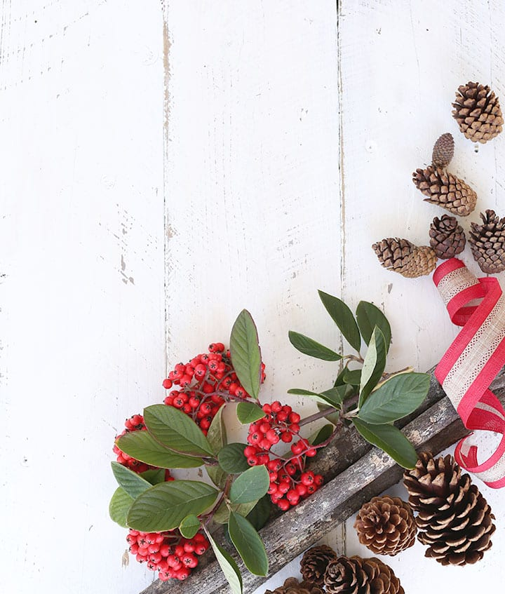 Christmas Berries & Pinecones SI Blog
