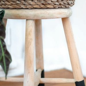 Stool Plant Stand - Natural Wood with Painted Feet