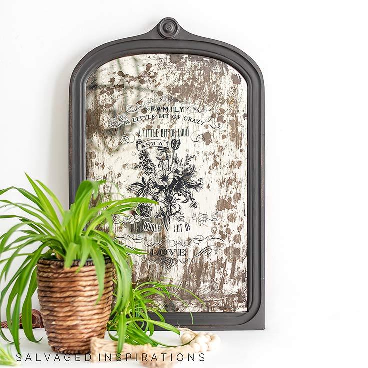 Distressed Vintage Mirror w Plant