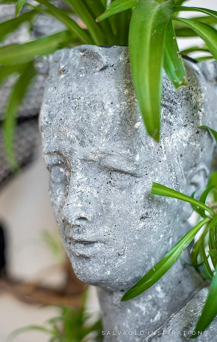 Close Up DIY Concrete Planter Head