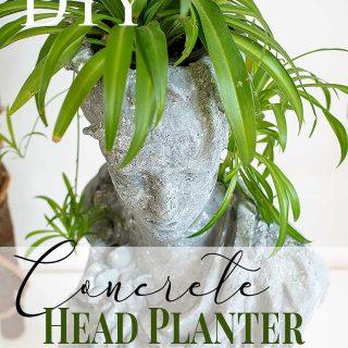 DIY Concrete Head Planter