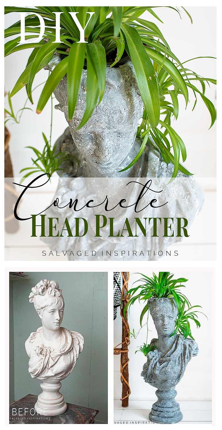 DIY Concrete Head Planter PIN