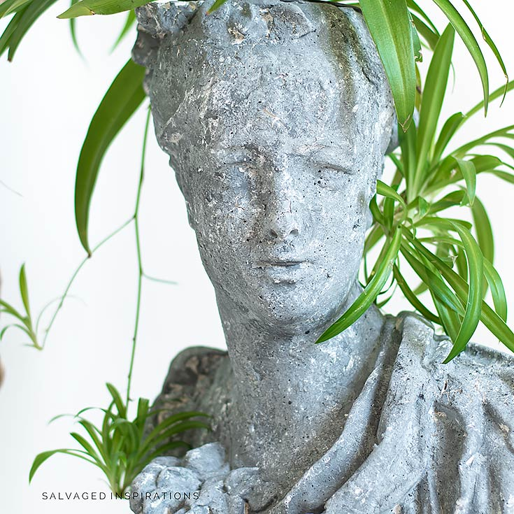 Plant in Concrete FACE Planter IG
