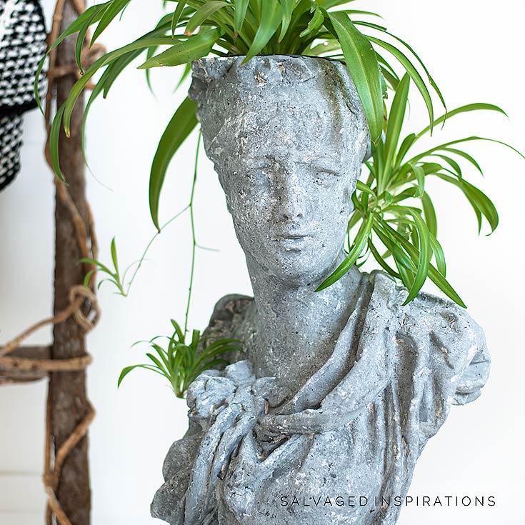 Plant in Concrete Head Planter Pot IG