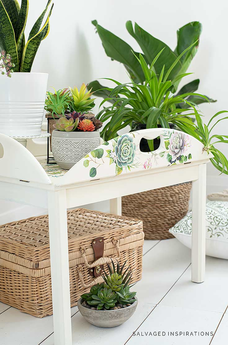Succulent Tray Table Makeover