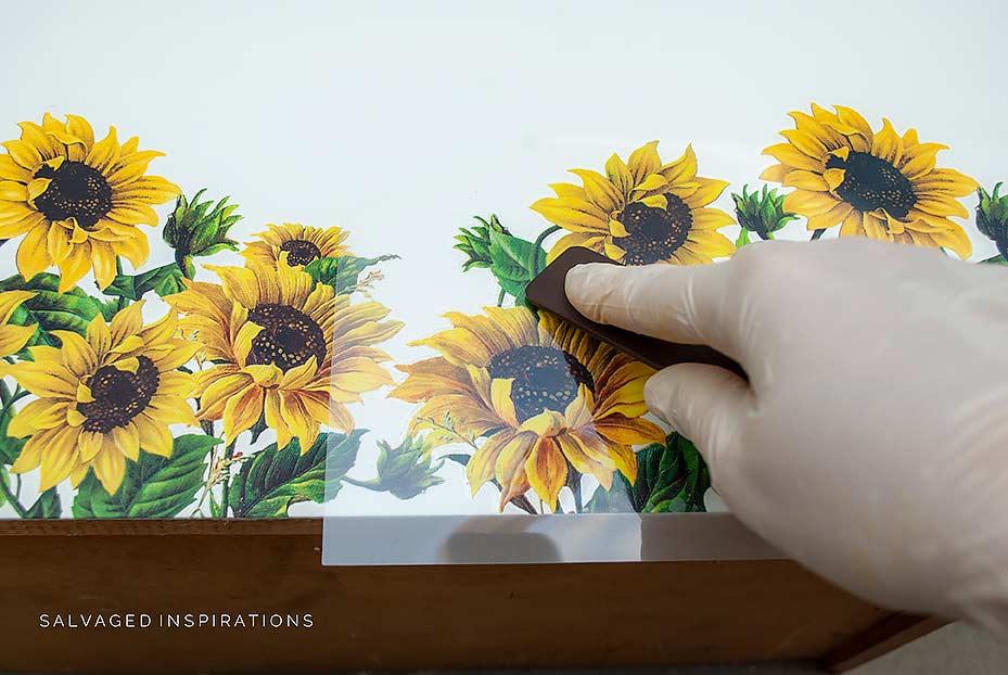 Rubbing On Sunflower Transfer